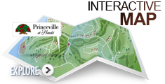 Princeville Map